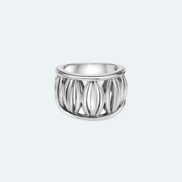 Bird Cage Collection Wide Ring Preview Image